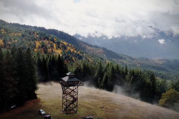 Na Airbnb możecie wynająć wieżę obserwacyjną z widokiem na g&oacute;ry i las<