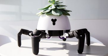 Ten ścigający słońce robot sam zaopiekuje się twoją rośliną
