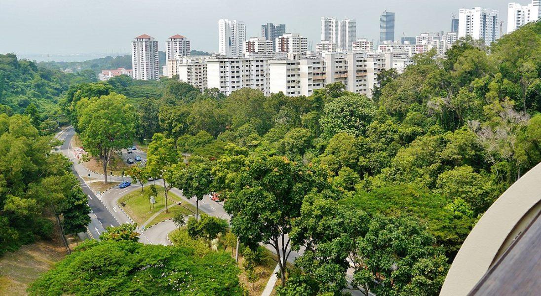 Oto 11 najbardziej ekologicznych miast na świecie