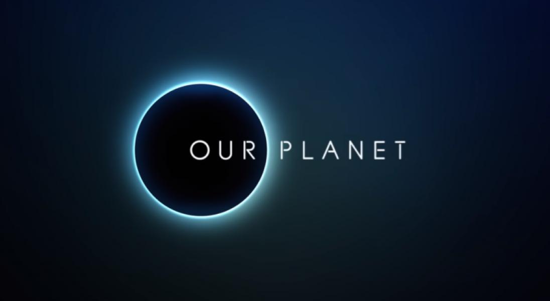 """Netflix łączy siły z BBC i Davidem Attenborough. Powstanie serial dokumentalny """"Our Planet"""""""