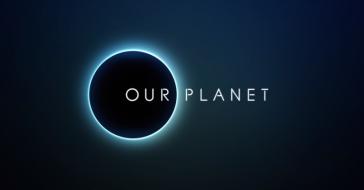 Netflix łączy siły z BBC i Davidem Attenborough. Powstanie serial dokumentalny Our Planet