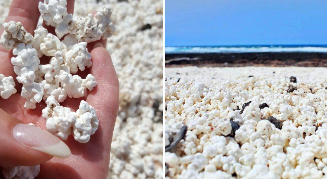 Popcorn Beach - plaża, którą chcą odwiedzić wszyscy Instagramerzy