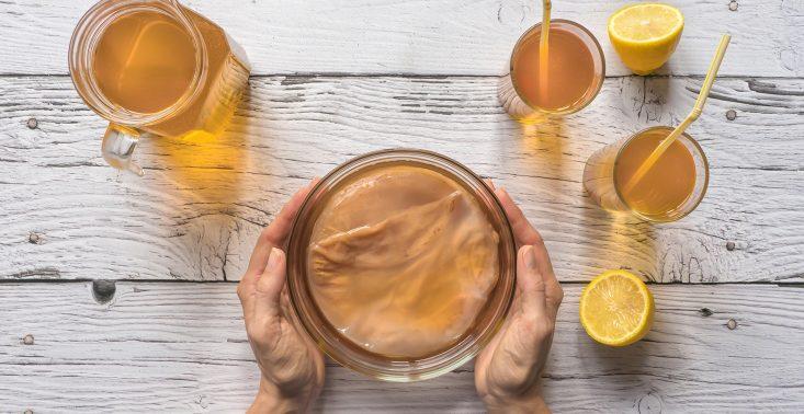 Kombucha, kumys i makgeolli. Po jakie fermentowane napoje warto dziś sięgać?<