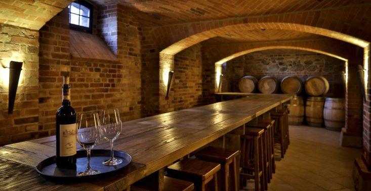 7 polskich winnic, które trzeba odwiedzić<