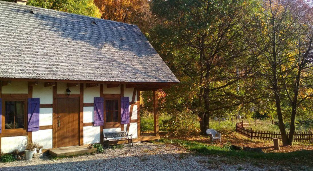 7 przykładów ekologicznej agroturystyki w Polsce, gdzie wypoczniesz jak nigdy
