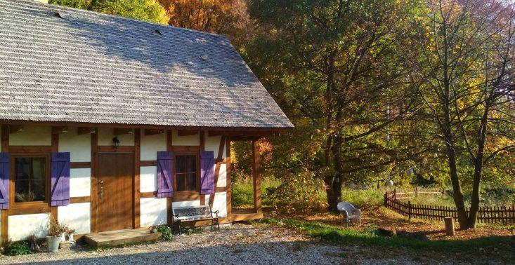7 przykładów ekologicznej agroturystyki w Polsce, gdzie wypoczniesz jak nigdy<